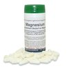 Magnesium 90 Kapseln/ 41 g